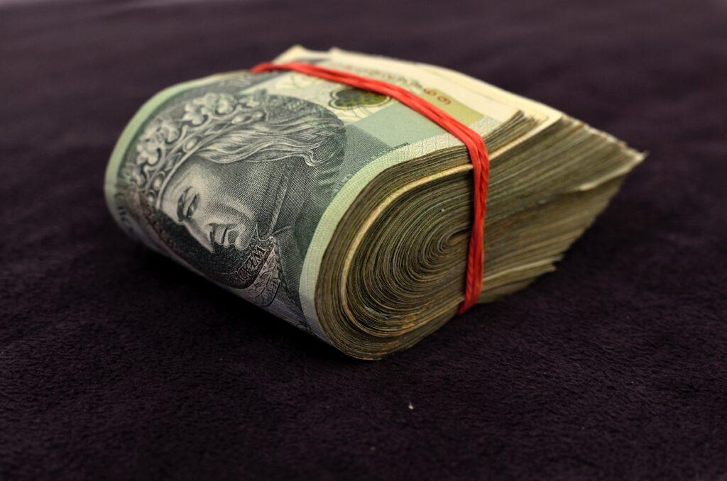 Pracownicze Plany Kapitałowe - czy warto?